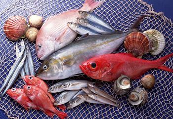 Pesce allevato o pesce di mare?